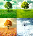 The Four Seasons - Vivaldi