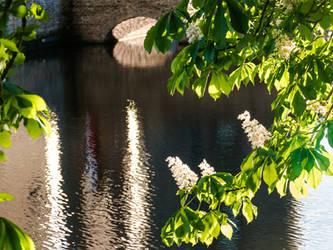 Sunshine on water by chetje