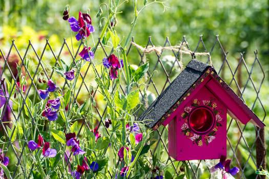 Painted bird house in the garden