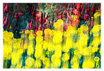 Marigold and Fuchsia by PeterLovelock