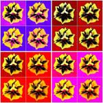 Tulip Stamen Collage l