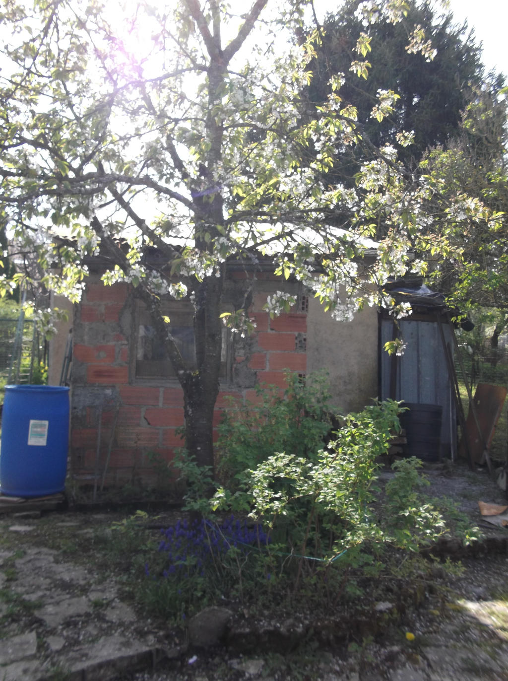 La cabane au fond du jardin by melusineh on deviantart for Cabane au fond du jardin