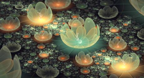On the lotus pond