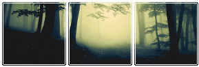 [Image: forest_by_misstoxicslime-dba6srj.png]