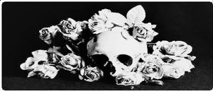 Skull Rose by CosmicStardustTea