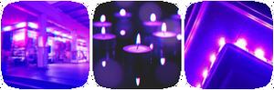 Purple Neon Divider 3