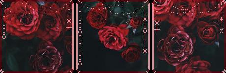 https://images-wixmp-ed30a86b8c4ca887773594c2.wixmp.com/f/2f5cf225-3fed-42e2-819a-6b96622e434f/dd0ckfj-2bc5314d-b5da-40d2-9a05-d884512e9871.png/v1/fill/w_460,h_150,strp/red_flowers_divider_by_glitchyxenon_dd0ckfj-fullview.png?token=eyJ0eXAiOiJKV1QiLCJhbGciOiJIUzI1NiJ9.eyJzdWIiOiJ1cm46YXBwOiIsImlzcyI6InVybjphcHA6Iiwib2JqIjpbW3siaGVpZ2h0IjoiPD0xNTAiLCJwYXRoIjoiXC9mXC8yZjVjZjIyNS0zZmVkLTQyZTItODE5YS02Yjk2NjIyZTQzNGZcL2RkMGNrZmotMmJjNTMxNGQtYjVkYS00MGQyLTlhMDUtZDg4NDUxMmU5ODcxLnBuZyIsIndpZHRoIjoiPD00NjAifV1dLCJhdWQiOlsidXJuOnNlcnZpY2U6aW1hZ2Uub3BlcmF0aW9ucyJdfQ.DBB6iybGjaR0ZpbIGT8ud_po3irYQHnlZvJNF1cWuAQ
