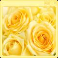 Yellow Roses Decor
