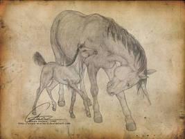 Unicorns by ValkAngie