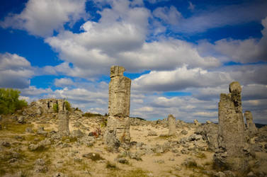 The Stone Forest BG