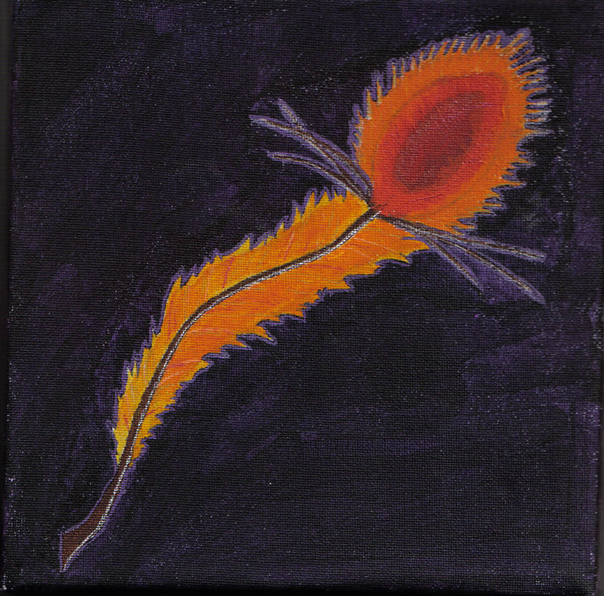 phoenix feather by ashblackphoenix