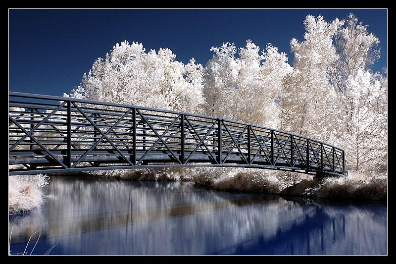 Bridge in false color infrared