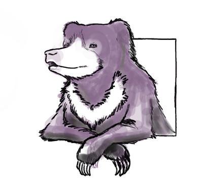 Sloth Bear by carowi