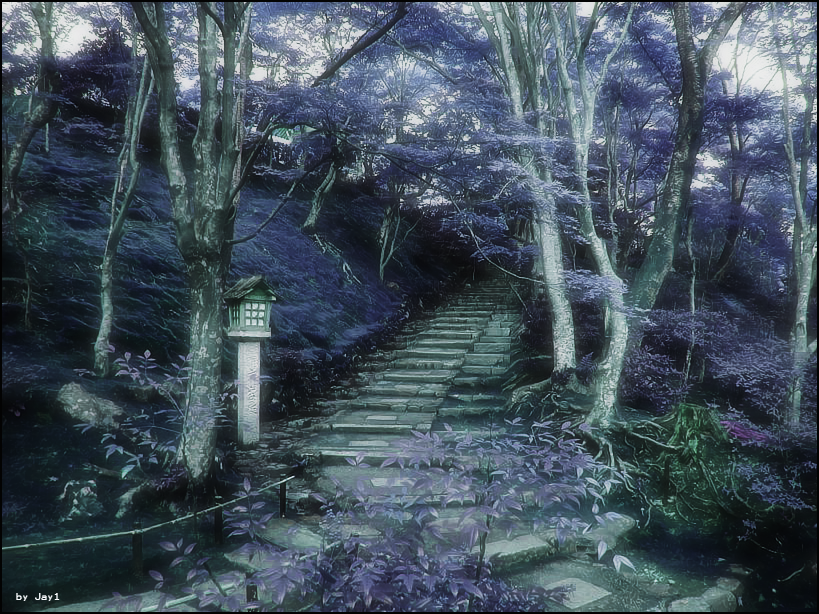 Japanese Purple Forest by Jay1pl