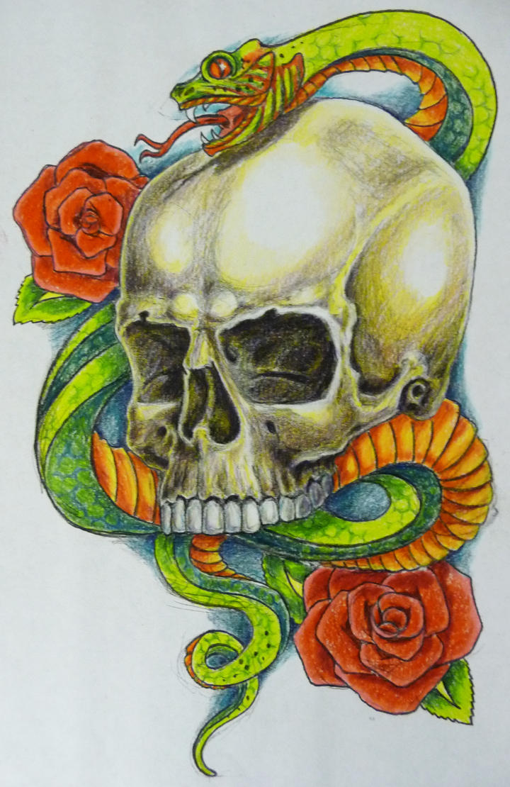 snake skull colour by hoviemon on DeviantArt