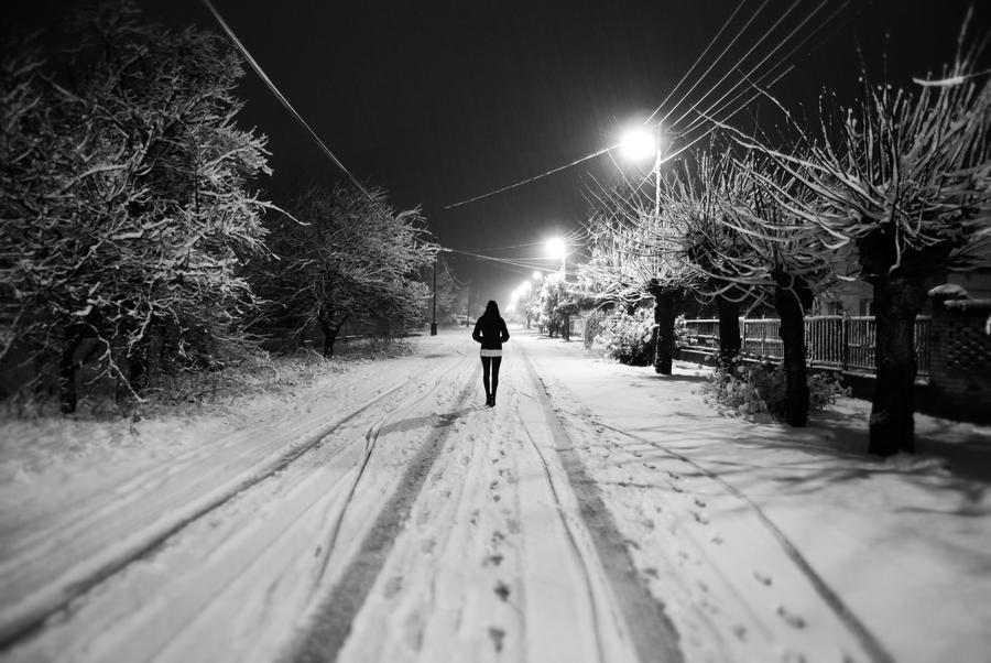Walking on the snow by adamcroh