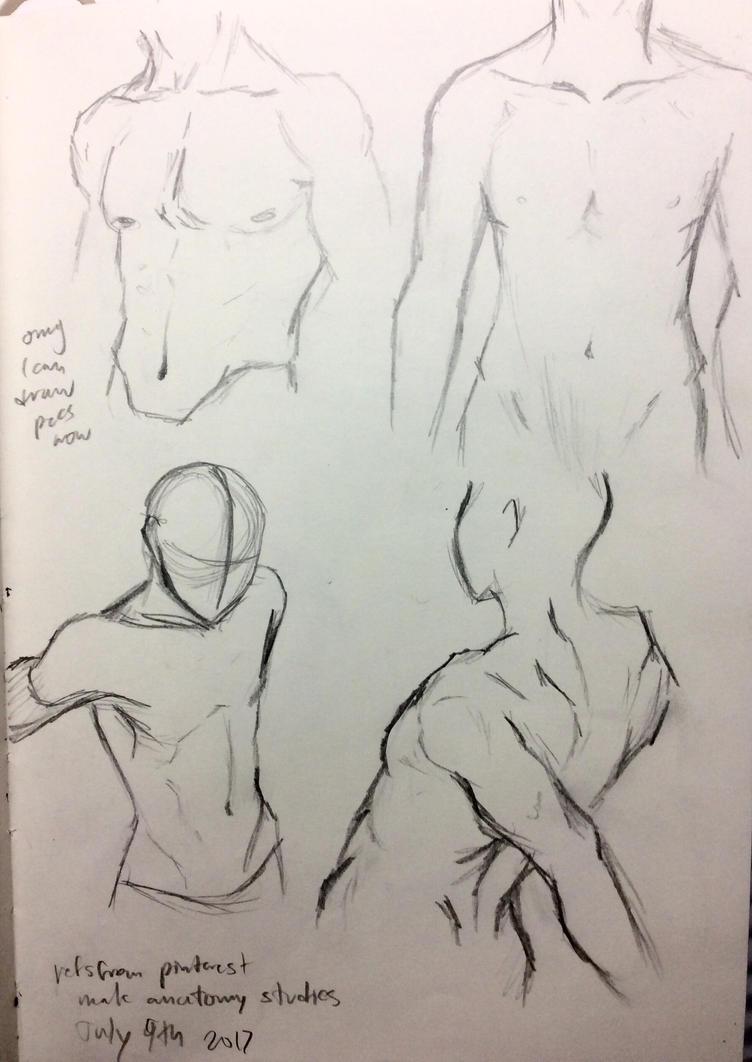 Male Anatomy Sketches by nightxabyss on DeviantArt