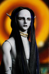 The Chief - waiting by surya-s-dolls