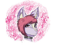 Furry#2