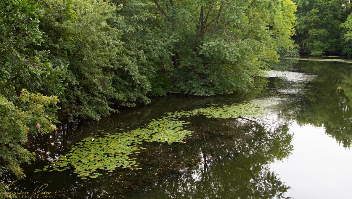 Mystic River by tordavis