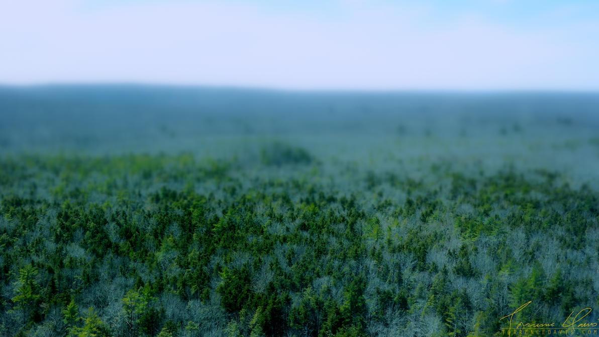 Foxwoods by tordavis