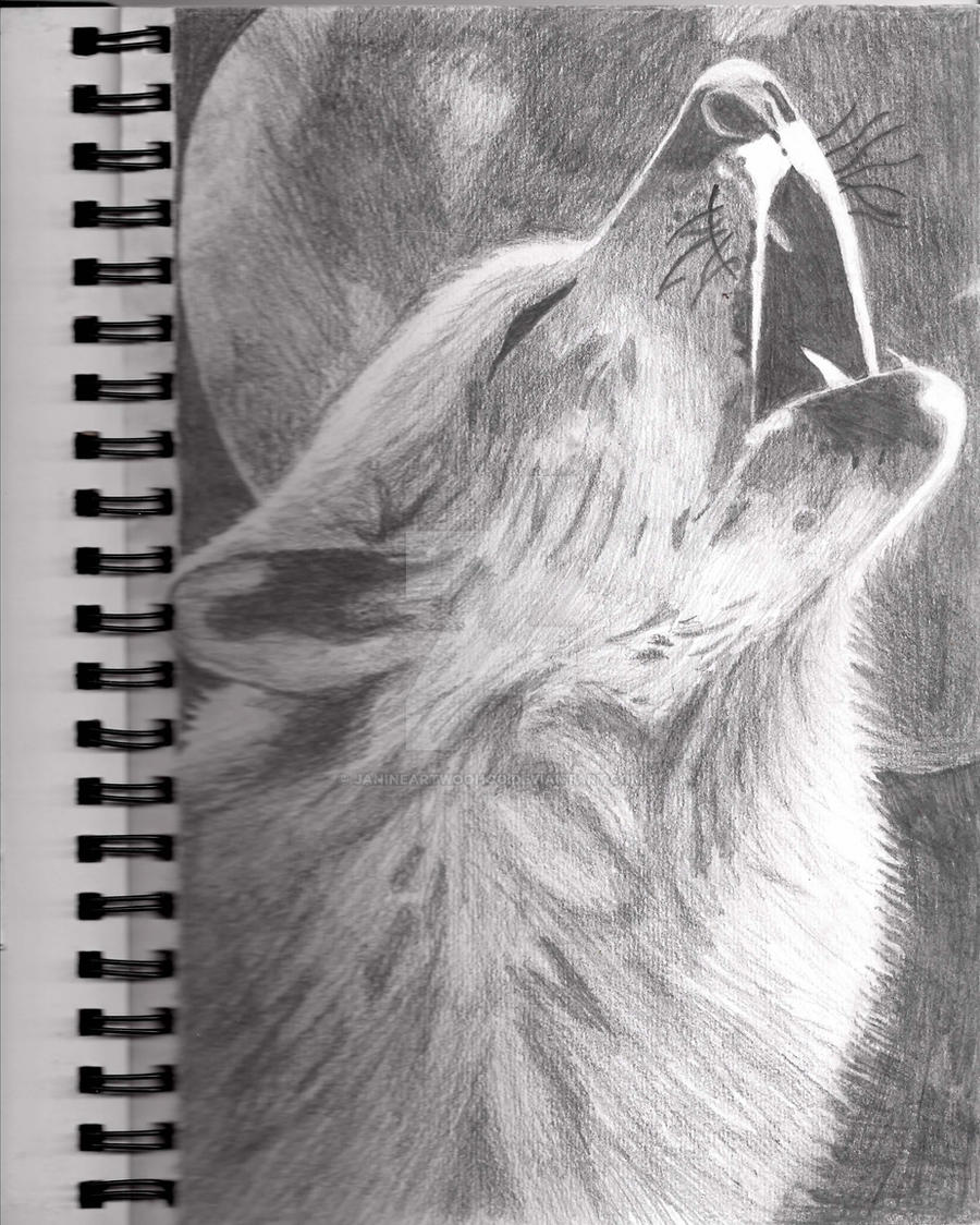 Howling Wolf Drawing by JanineArtWoohoo on DeviantArt