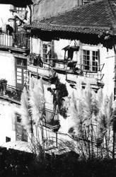 maisons de Porto by dinausore