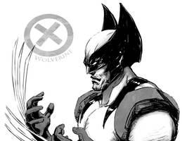 Wolverine Print by Dre0083