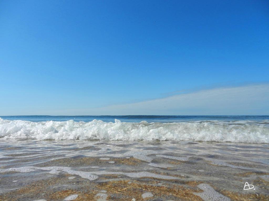 http://img06.deviantart.net/e1cf/i/2017/219/e/2/summer_beach_by_yerdua-dbj7odz.jpg