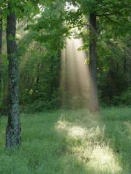 Shaft of light 1