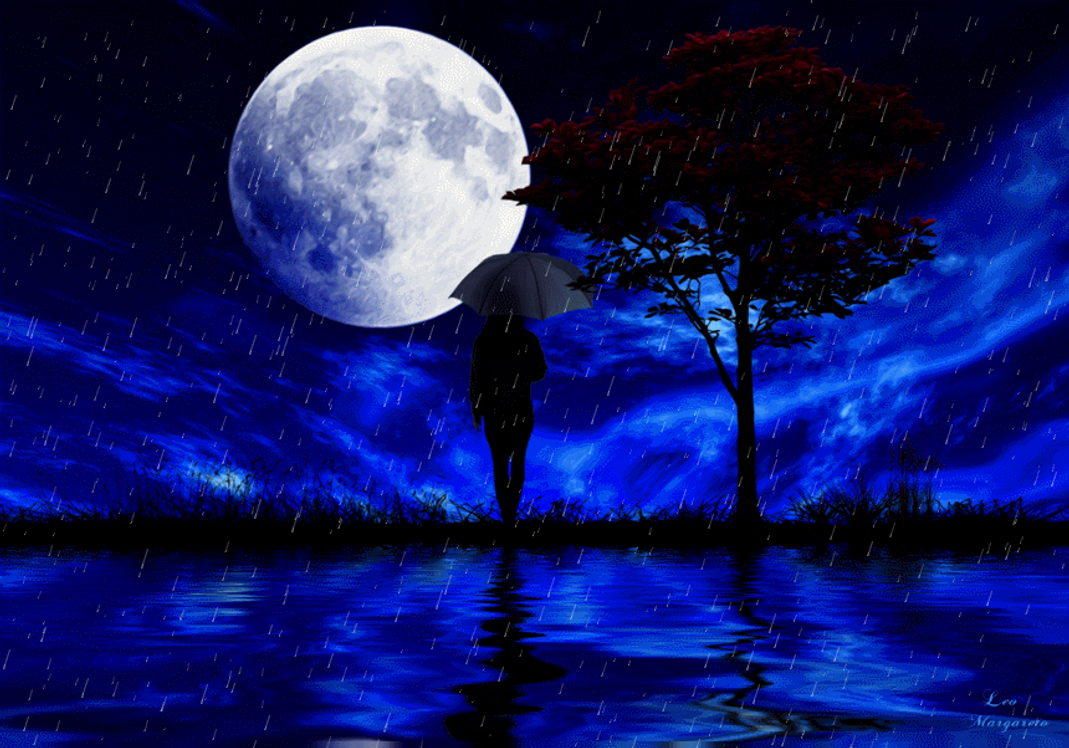 Rainy summer nights... Animation by Leocervas