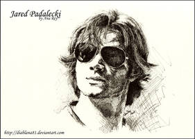 Jared sunglasses by diablana81