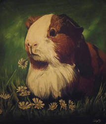 Guinea Pigu by AliyaSapphire