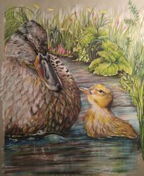 ducks by AliyaSapphire