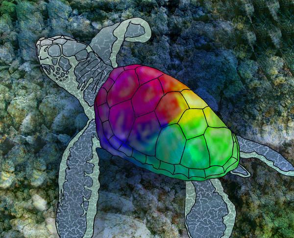 Little Rainbow Turtle By Kisablue On Deviantart