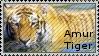 |Stamp| Amur Tiger by MattsMadeOfCandy