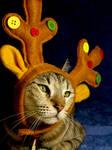 My Christmas Reindeer by JacquiJax