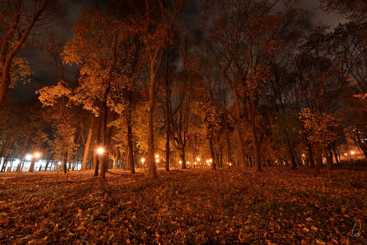 Autumn Evening....
