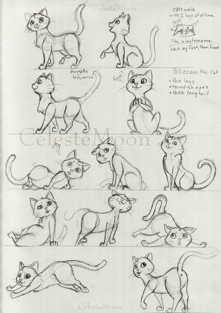 Blizzard the cat concept poses by celestemoon on deviantart for How to draw a body tumblr