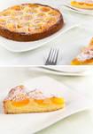 133 - Tarte a l'abricot by RoselineLphoto