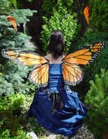 Monarch Fairy Wings by customfairywings