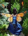 Monarch Fairy Wings