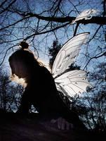 White Wings in Tatters by customfairywings
