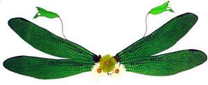 Green Double Dragonfly Wings by customfairywings