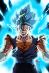 This is Vegetto Blue