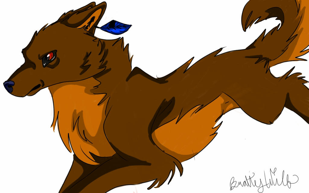 Orange Wolf Drawing Wolf Drawing by
