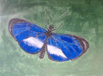 Blue Butterfly on a leaf. by Halekyn-Steel