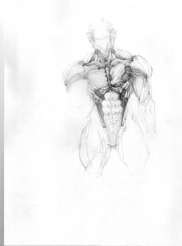 Raiden's suit 2