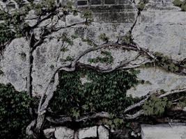 vintage grunge wall by k612