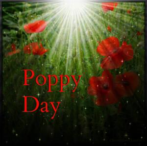 Poppy Day 2015